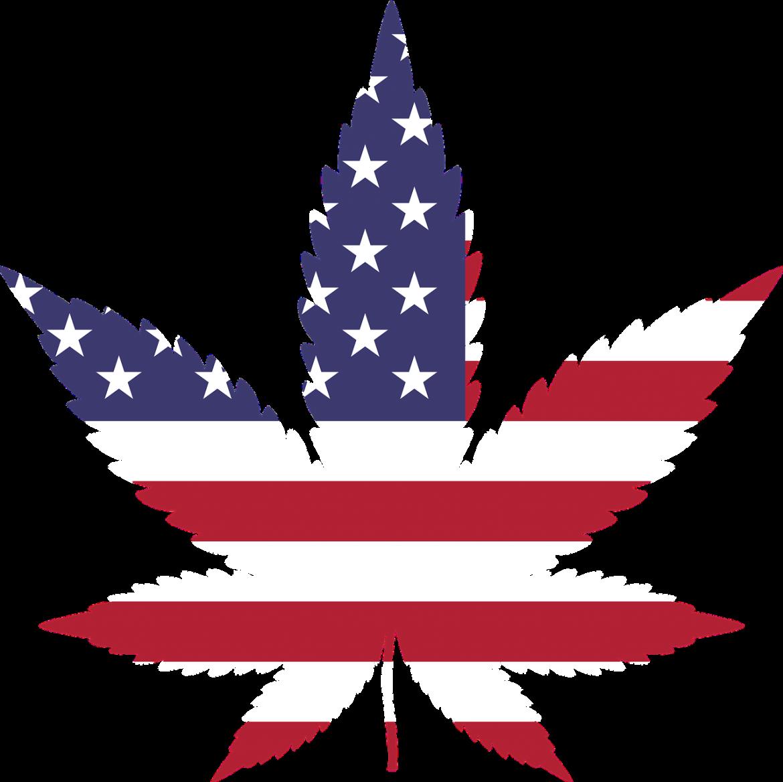 Les 4 pays les plus gros consommateurs de cannabis