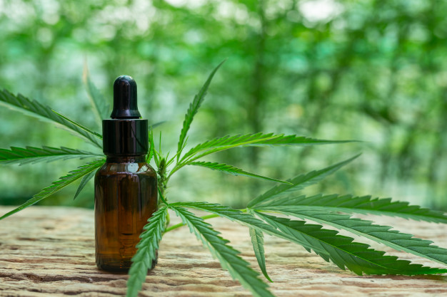 L'huile de cannabis pour soigner le cancer