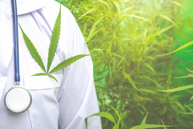 Santé: les risques de la consommation de cannabis